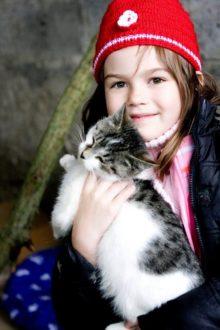 Zaproszenie do adopcji zwierząt