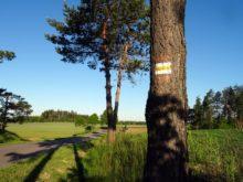 Oznakowany szlak pogranicza